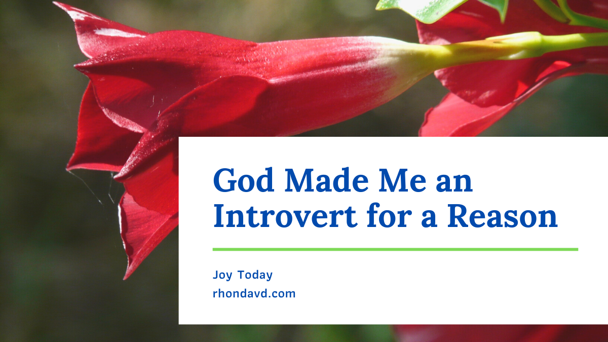God Made Me an Introvert for a Reason